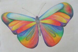 getekende vlinder